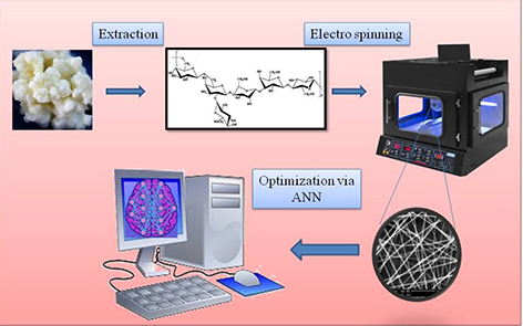 Evaluation of the Effective Electrospinning Parameters Controlling Kefiran Nanofibers Diameter Using Modelling Artificial Neural Networks