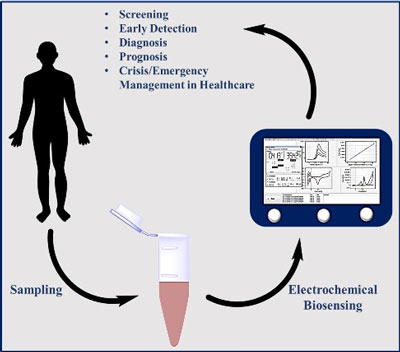 Electrochemical miRNA Biosensors: The Benefits of Nanotechnology