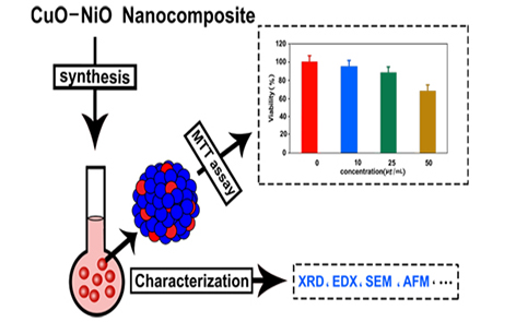 CuO-NiO Nano composites: Synthesis, Characterization, and Cytotoxicity ‎evaluation ‎